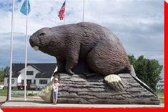 World's Largest Beaver, beaverlodge, alberta