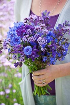 Anchusa, centaurea, verbena & salvia - blue and purple cut flower seed mix