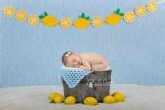 Lemonade Newborn Digital Backdrop. Digital Prop. Summer Newborn photography ideas.
