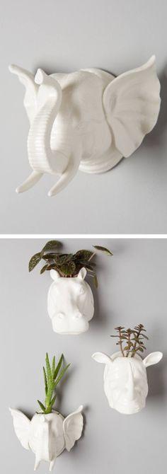 Animal wall planters