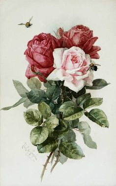"""art-and-things-of-beauty: """" Paul de Longpré - Roses and bumblebee, watercolour, 47 x cm. Victorian Flowers, Vintage Flowers, Vintage Floral, Arte Floral, Floral Theme, Vintage Printable, Vintage Rosen, Rose Pictures, Watercolor Rose"""