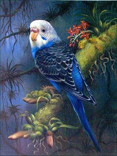bird-painting-064.jpg 478×640 pixels