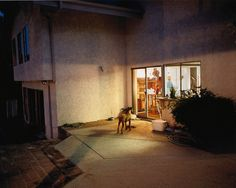 "from The Valley @ Larry Sultan Estate ""That [Ambiguity] is really important to me. Part of the difficulty facing photographers is that almost any subject matter has accumulated a representational history, so to find a new discursive space, a space to wander around those subject matters, is a real challenge. If I know too much, if …"