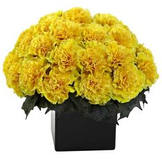 Carnation Arrangement W/Vase