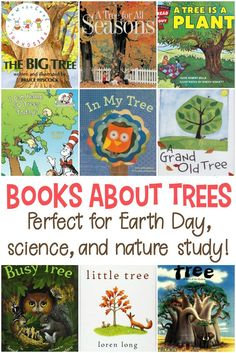 Whether you're studying trees, leaves, or life in the forest, this collection of picture books about trees is the perfect place to start your lessons.  via @homeschlprek