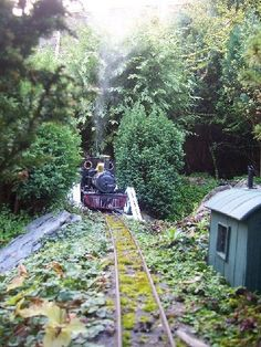 """The Isle of Westland Railway 