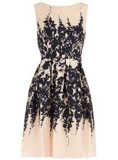 Dorothy Perkins  Nude floral border prom dress