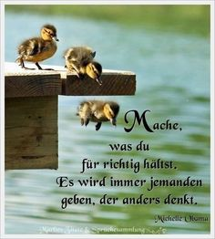 Spruch - richtig, anders denken The Effective Pictures We Offer You About Quotes Emotions feelings A Midnight Thoughts, Thanks Words, Positive Mantras, German Quotes, Truth Quotes, Happy Quotes, Slogan, Decir No, Life Is Good