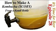 how to make a scoby from store bought kombucha