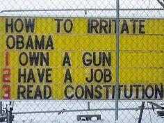 Irritate Obama!