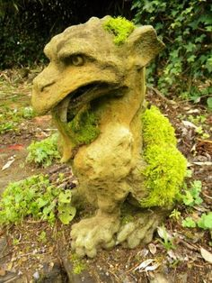 Dragon with moss - Jewell's Photos