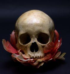 UB_Skull_Flowers_23.jpg