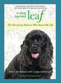 A DOG NAMED LEAF -- The inspiring true story of comrades facing the ultimate battle. This man and this dog are there for each other at exactly the right time for miracles to occur.
