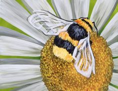 $25 Wine Down Wednesday: Bumblebee Buzz