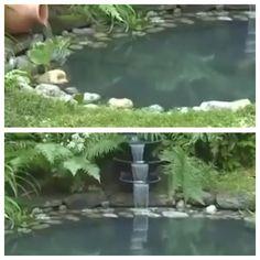 Small pond