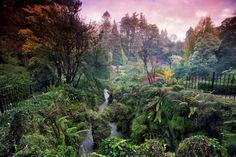 Irlanda: i favolosi giardini dell'Isola di smeraldo