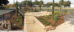 Rea Park (Jack) Butterfly Garden JPEG image and link to PDF version