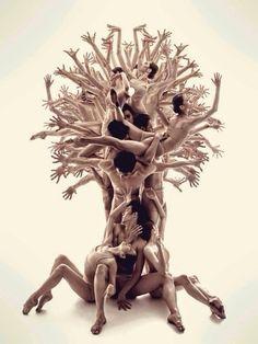 Source: @decorkiki     Tree of Life ~ Sakartvelo ...