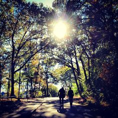 Beautiful #BabsonFall Storify created by @Tyler Murphy. Check out some of these great photos!