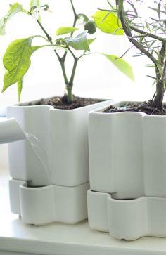 43 Best Garden Self Watering Images Diy Self Watering Planter
