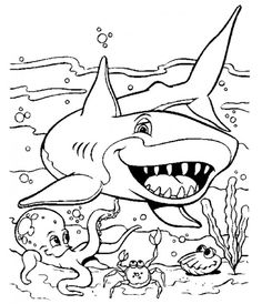 Drawings of sharks for kids to color.