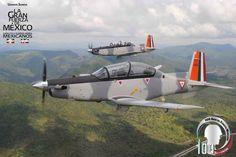 Mexican Air Force                                                                                                Texan II