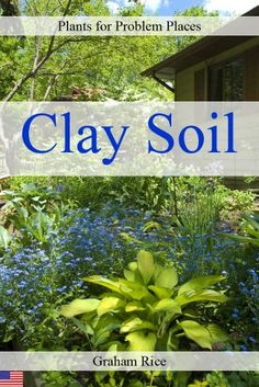 plants for clay soil clay soil clay and plants
