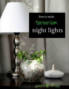 Make a night light terrarium