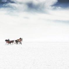 Günaydın  Good morning #kars 2015 I really want to go back to Kars next year and shoot these horses again. Kars is one of the cities that does not lose its natural life and  is a treasure-trove for photographers. . .  Önümüzdeki sene tekrar gidip bu atları çekebilmeyi çok istiyorum. Doğal yaşamını kaybetmeyen şehirlerden bir tanesi olan Kars fotoğraf çekmeyi sevenler için müthiş bir hazine.