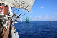 Sedov four masted barque sail training ship, Funchal 500 Race 2008, Atlantik Ocean