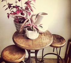 mesa redonda hierro y madera chica Vintage Design, Greenery, Sweet Home, Balcony, Table, Palermo, Furniture, Home Decor, Flowers