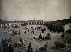 Fiera dei cavalli,la fiera vista da via dei Pontiere nell'area dell'antico convento delle Franceschine - 1897.