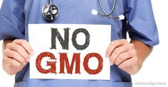 3 Reasons I Don't Eat GMO Food: An MD Explains