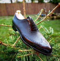 Last MTO pair in solid - F last in Black Scotchgrain and Calf for sale. PM us for today deal. Comes with trees and shipping to US. (at Ascot Shoes) Ascot Shoes, Men's Shoes, Shoes Men, Supreme Shoes, Spectator Shoes, Wingtip Shoes, Brogues, Gentleman Shoes, Best Shoes For Men