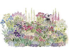 Pastellbeet Ein Beet zum Hineinkuscheln:   Die zarten Blütenfarben sind wunderbar unaufdringlich und ziehen einen doch in ihren Bann. In diesem...