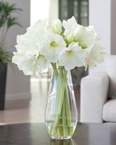 Amaryllis Elegance Silk Flower Arrangement - White Item Number: FLC716-WH on silkflowers.com