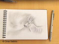 #deer #sketch #drawing #art