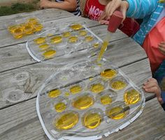 Preschool bee study unit including craft, discussion and outdoor play