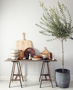 Planten in huis, olijfboom, interieur #lifestyleblog www.looselab.nl