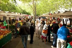 Learn how to fit in a French open-air market.