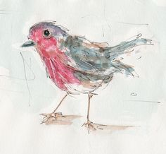Robin. Illustration by Patricia Mellett Brown.