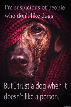 #Truth pic.twitter.com/XFf5WDwctv