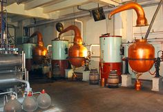 Contemporary set up of small copper pot stills at the Chartreuse distillery in France Elegant Home Decor, Elegant Homes, Beer Brewing, Home Brewing, Distillery, Brewery, Tequila, Distilling Alcohol, Copper Pot Still