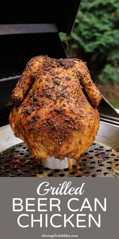 Grilled Beer Can Chicken from afarmgirlsdabbles. - A whole chicken is grilled over a half-full can of beer, guaranteeing moist, fall-off-the-bone meat and crispy, ultra flavorful skin. Source by krissaraa dresses ideas Grilled Whole Chicken, Beer Chicken, Canned Chicken, Grilled Meat, Stuffed Whole Chicken, Bbq Whole Chicken, Chicken On The Grill, Chicken Rub, Grilling