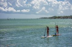 Islamorada, Florida with Kids: Top 15 Things to Do on Your Family Beach Vacation - Family travel to Islamorada, Florida with kids | Mommy Poppins Family Travel