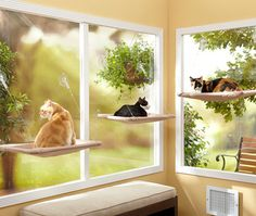 The Sunny Seat is the cat bed that attaches to your windows, allowing your kitties to enjoy the warm sun and view of the outdoors without taking up space or laying on your furniture!