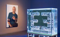 Installation View: Antoine Catala: Distant Feel; Carnegie Museum of Art