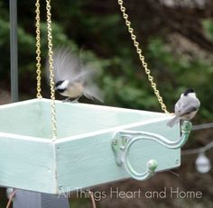 Easy platform bird feeder, crafts, gardening Come over All Things Heart and Home for more detailed instructions! Have a cozy day my friends xo To see more: http://www.allthingsheartandhome.com/2015/02/easy-diy-platform-bird-feeder/g, pets animals, woodworking projects...
