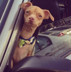 """""""There will always be haters. There will always be lovers. I'm the latter,"""" Tuna says. 