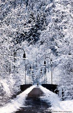 """500px / Photo """"Snowy bridge"""" by Jorge Maia"""